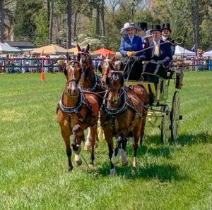 Aiken Carriage Classic